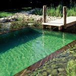 Chauffage piscine naturelle